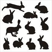 stock photo of bunny ears  - Easter bunny silhouettes symbol