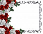 picture of white roses  - Image and illustration composition red white roses design element for Valentine Birthday party wedding invitation background border or frame with copy space - JPG