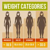 picture of cellulite  - Body mass index retro infographics poster - JPG