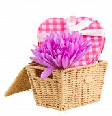 Постер, плакат: basket with crocus flowers and gift box