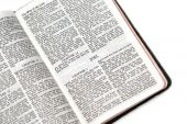 stock photo of holy-bible  - holy bible open to the book of joel on white background - JPG