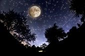 picture of starry sky  - Starry Sky and full moon - JPG