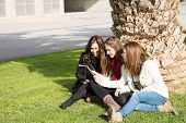 picture of wench  - Young female students consulted on a tablet - JPG
