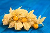 stock photo of lats  - Physalis berry fruits  - JPG