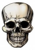 foto of lithographic  - A human Skull or grim reaper skeleton head illustration in a vintage style - JPG