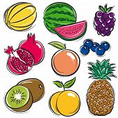 stock photo of melon  - set of fruits melon watermelon blackberry peach vector - JPG