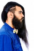 stock photo of brunete  - Profile portrait of a young brunet man with a beard and long haired - JPG