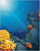 image of fish pond  - Illustration of the corals near the rocks and the school of fish - JPG
