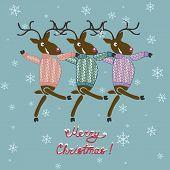 foto of deer  - Christmas deer in sweater  - JPG