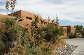 stock photo of hacienda  - Mexican house behind a  garden of yucca and cactus in New Mexico state  - JPG