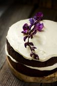image of tort  - Small sweet Chocolate torte with delicate cream - JPG