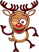 stock photo of bulging belly  - Cute brown reindeer with big antlers and red nose while raising a leg - JPG