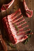 picture of lamb chops  - Organic Raw Lamb Chops with Herbs and Spices - JPG