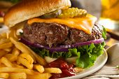 picture of hamburger-steak  - Grass Fed Bison Hamburger with Lettuce and Cheese - JPG