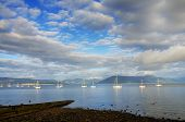 stock photo of sails  - Scenic view of boats sailing on the river Clyde at Gourock - JPG