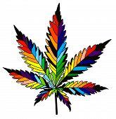 picture of reggae  - isolated rainbow vector cannabis leaf on a white backgrownd - JPG