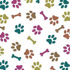 picture of dog tracks  - Multi - JPG