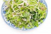 picture of laxatives  - Dish of Vietnamese herbs on a white background - JPG
