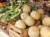 stock photo of cantaloupe  - Fresh cantaloupes and corn on the cob piled high in crates at countryside farmer - JPG