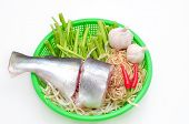 pic of pangasius  - Pangasius or Vietnamese catfish in the kitchen in a white background - JPG