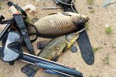 stock photo of spearfishing  - Equipment for spearfishing on the background of sand - JPG
