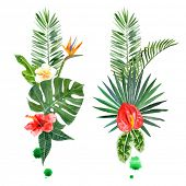 stock photo of tropical plants  - watercolor tropical plants for your designs over white background - JPG