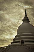 stock photo of monochromatic  - Photo of the Japanese peace pagoda - JPG