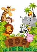 picture of zoo  - Vector illustration of Cartoon collection zoo animals - JPG