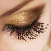 foto of eyebrow  - Woman eye with extremely long eyelashes - JPG