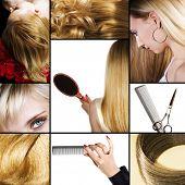 Постер, плакат: Коллаж из нескольких фотографий для индустрии красоты