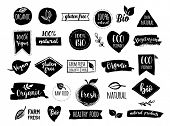 Bio, Ecology, Organic logos and icons, labels, tags. Hand drawn bio healthy food badges, set of raw, poster