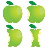 foto of nibbling  - Green nibbled apple - JPG