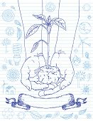 foto of plant pot  - Hands Holding Plant with Doodles - JPG
