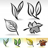 Leaf ICONs Calligraphic Illustration