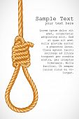 stock photo of hangmans noose  - illustration of noose hanging on abstract background - JPG