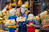 Kids Having Fun At Pumpkin Patch poster