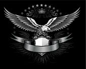 foto of spread wings  - Fury spread winged eagle insignia - JPG