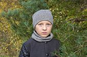 Portrait Boy In Autumn Coat, Between The Pines The Boy Is Fashionable In A Coat poster