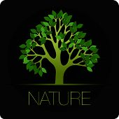 tree vector icon nature background