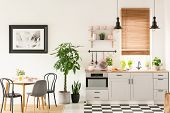 Real Photo Of Bright Kitchen Interior With Checkerboard Floor, Pastel Pink Accessories, Fresh Plants poster