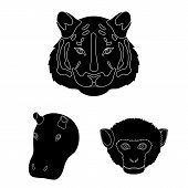 Wild Animal Black Icons In Set Collection For Design. Mammal And Bird Vector Symbol Stock Web Illust poster