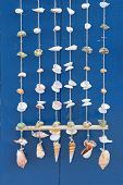 picture of windchime  - An arrangement of seashells as windchimes or a decoration.