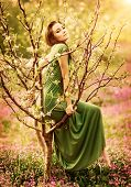 picture of tree-flower  - Fairy - JPG