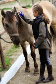 picture of breed horse  - Horse and lovely equestrian girl - JPG