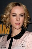 LOS ANGELES - DEC 11:  Jena Malone at the