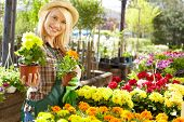 picture of greenhouse  - Florists woman working with flowers at a greenhouse - JPG