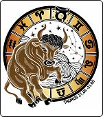 picture of bull-riding  - Taurus rides and all zodiac signs Horoscope circle on a white background - JPG
