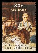 AUSTRALIA - CIRCA 1986: A stamp printed in Australia shows sheepshearing, Tar-boy is there, circa 19