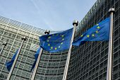 picture of european  - European Union flags in front of the Berlaymont building  - JPG