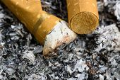 stock photo of butt  - Cigarette butts in an ashtray - JPG